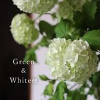 Green & White便【3,000円コース】