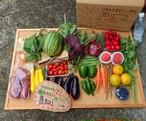 梅雨時★野菜とフルーツ 基本野菜。 フルーツ充実!初桃 スモモ