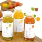 IT技術を駆使して栽培した『黄いろのトマト100%ジュース』180ml入り 黄いろ、赤、紫、緑