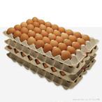 赤玉ネッカリッチ卵 160個入り