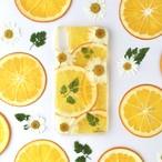 ハーブと柑橘系 押しフルーツスマホケース