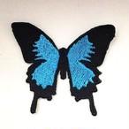 蝶々■オオルリアゲハ■ちょうちょ