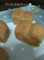 ワンワン食パン♪(プレーン)