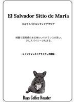 【ビオコーヒー】メキシコセスマッチトランジション<100g>