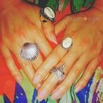 【リング3点セット】 タカラガイリング ×ホエールリング×パール貝 宝貝指輪 シェルリング