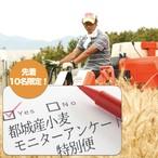 【送料無料! 追加5名】都城産小麦モニターアンケート特別便