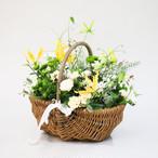 【母の日】花摘みバスケット