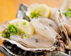 厚岸産生牡蠣 30個(M)