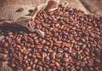 カフェインレス(ブラジル)100g
