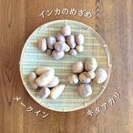 【数量限定】ねっこ自然農園の自然栽培じゃがいも3種 食べ比べセット