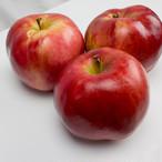 紅の夢 料理用B 5kg | 果肉まで赤い希少品種