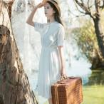 retro plate chiffon dress 1746