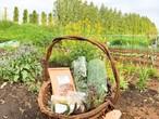 ハーブ畑から香りのギフトボックス