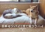 【NEW】2019 CALENDER 豆柴センパイと捨て猫コウハイ(石黒由紀子)