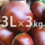 3Lサイズ 丹波栗(3kg)