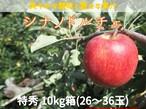 【予約・9/20頃~発送予定】シナノドルチェ 10㎏(24~36玉) 特秀 長野県産 りんご【敬老の日に最適】