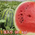 【鳥取県北栄町産】すいか(進物)※7月中旬まで! 1玉(8kg)