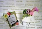 花いずもブートニア (カラーリリー:ピンク)