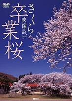 DVD 卒業桜 さくら映像詩 SAKURA for Graduation