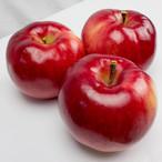 紅の夢 5kg 特選B | 果肉まで赤い希少品種