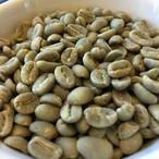 【コーヒー生豆・200g】エチオピア イルガチェフ コンガ ヲッシュド【ETHIOPIA COFFEE Yirgachef】