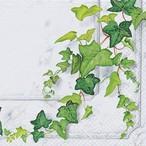 【Home Fashion】バラ売り2枚 ランチサイズ ペーパーナプキン EFEURANKE グリーン