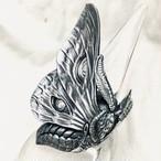 LMR107 Moth