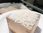小豆島産 千枚田のお米 10kg