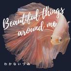 わかないづみ「Beautiful things around me」(プロトタイプCD-R)