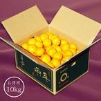 「日の丸みかん 千両 良品」Sサイズ 10kg
