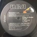 Imagination – Instinctual