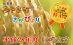 【H28収穫米】みやき町産『さがびより(玄米20kg)』7年連続特A受賞