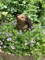 ガーデンオブジェ やや上向きのハリネズミ