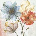 2月上旬入荷|新入荷【Paper+Design】バラ売り2枚 カクテルサイズ ペーパーナプキン Portrait of flowers クリーム