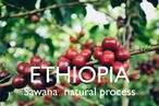 ETHIOPIA【natural】-french- 100g