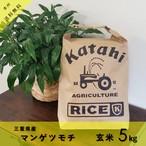 ◆もち米5kg◆令和2年三重県産マンゲツモチ玄米5㎏◆