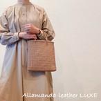 Leather mesh mini bag(スキンカラー)
