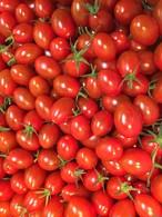 期間限定緊急事態販売!あまりこトマト2kg!!