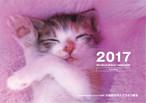 寄付つき こねこ卓上カレンダー2017