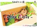 【毎月発送~三ヵ月分~】大山野菜Box Lサイズ