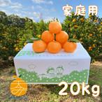 送料無料 家庭用ポンカン20kg M~Lサイズ混合