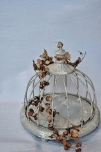 Birdcage no2
