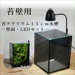 【ガラス容器・苔壁用】 苔テラリウム用 15cmガラス水槽 (150x150xh200mm)◆壁面・LEDライト付き