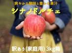 【予約・9/15~20発送予定】シナノドルチェ 3㎏(8~12玉) 家庭用(訳あり)   長野県産 りんご