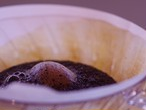 /LUTE コーヒー豆 定期便 200g×3回