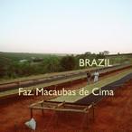 BRASIL -中浅煎り- 100g