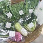 園主おまかせアジア野菜セット
