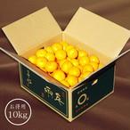 「日の丸みかん 千両」 10kg 良々品