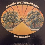 The Dramatics ‎– Whatcha See Is Whatcha Get