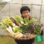 【S】季節のお野菜 おまかせボックスSサイズ